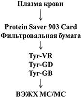 Koryagina_Graf